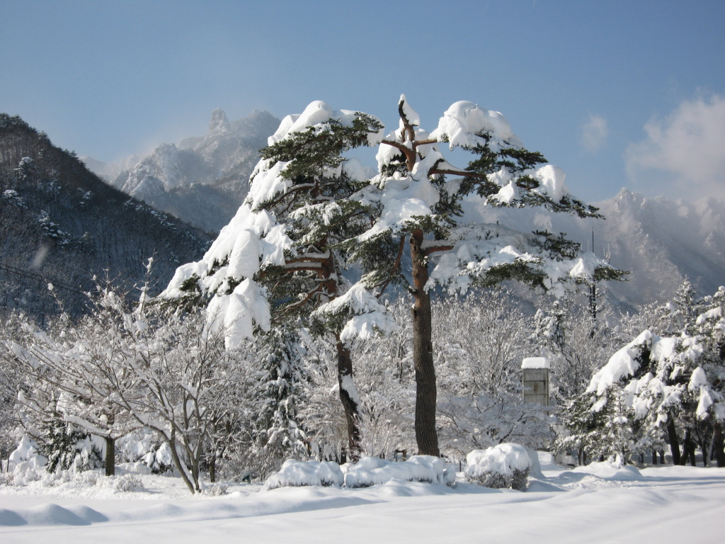 Seoul Korea Free And Easy With English Or Mandarin Speaking Guide Tour Winter Package 4d3n Mt Seorak National Park