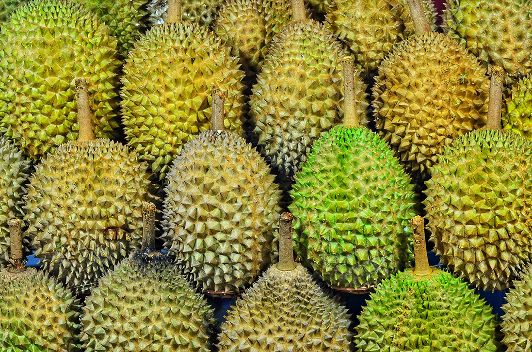 best durians malaysia